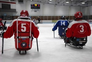 Adaptive Sled Hockey