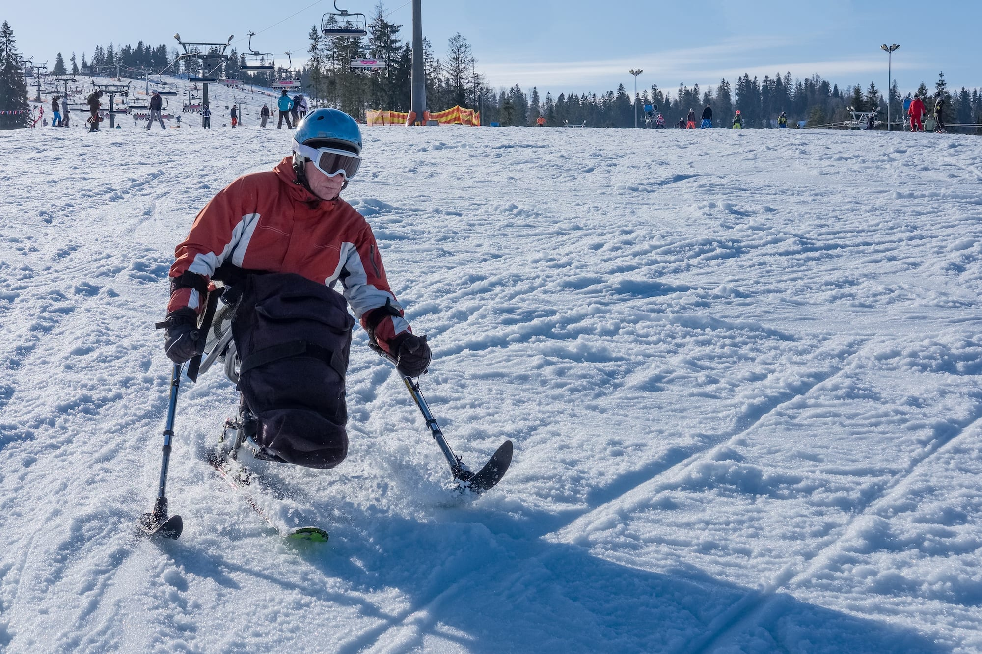 Adaptive Skiing